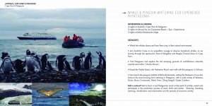 diseño-catalogo-across-2015-14